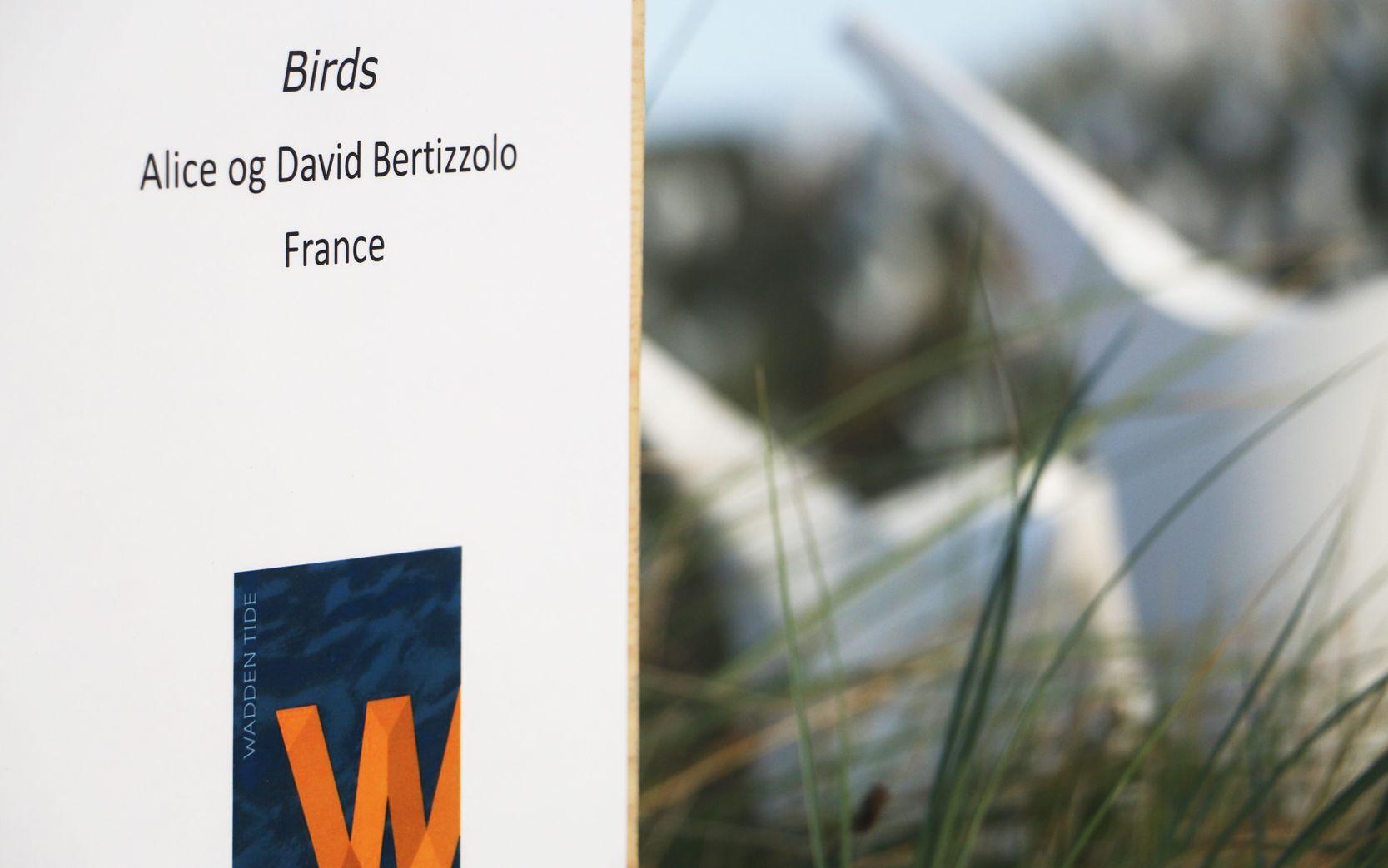 Birds Alice et David Bertizzolo - Festival Wadden tide 2016 - blavand - danemark en aout 2016 : panneau birds